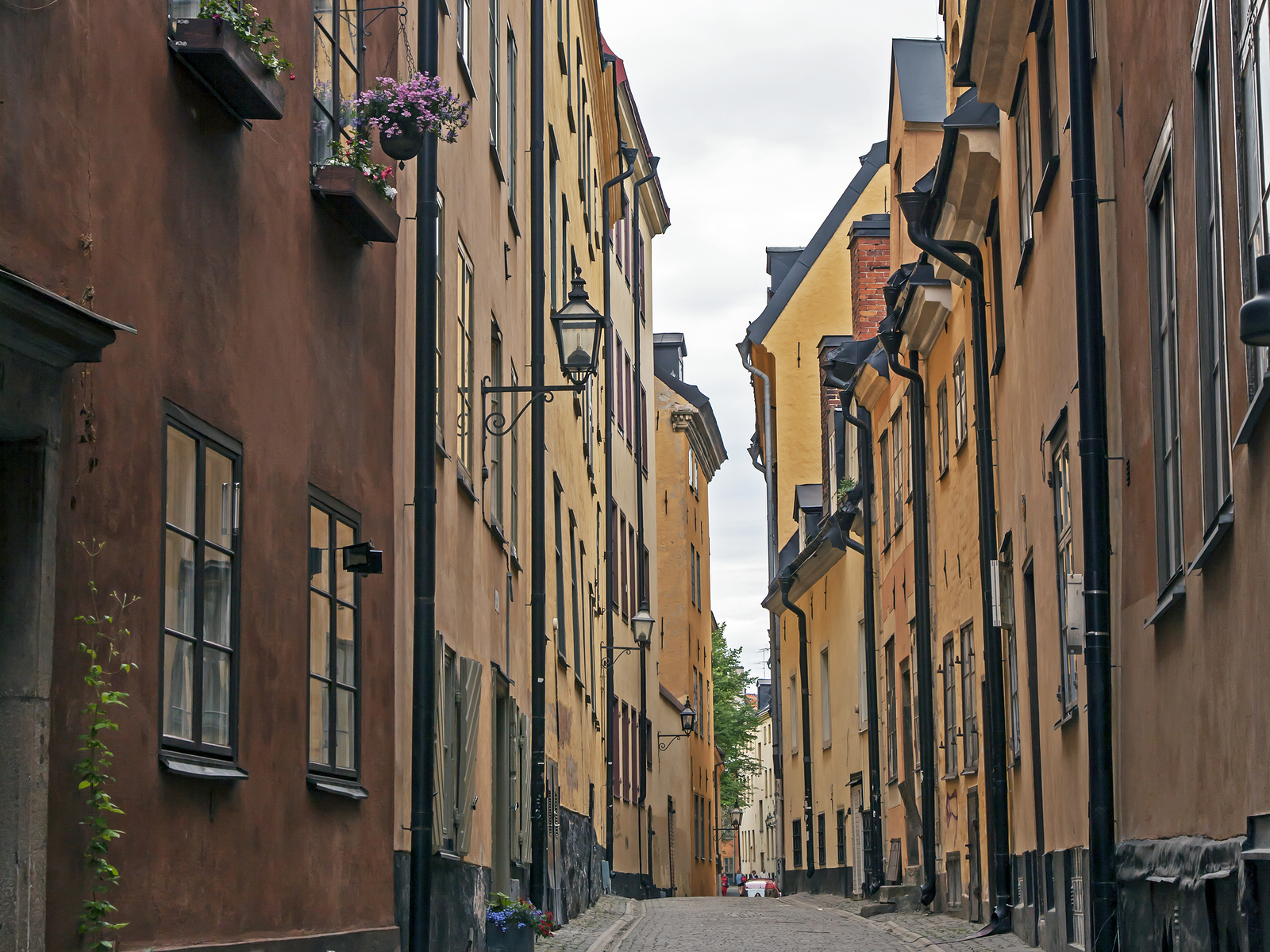 Guided Tour Gamla Stan